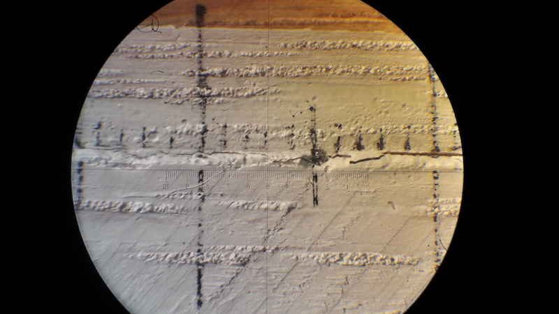 Crack in double cantilever beam sample (oak wood and rabbit sking glue joint). View from the Microscope.