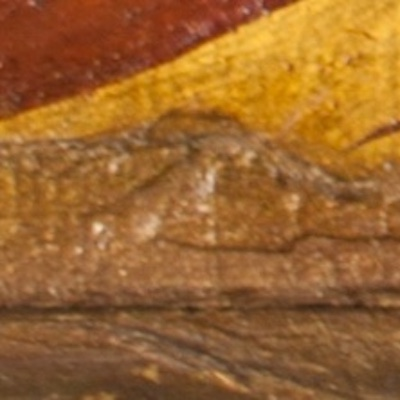 Detail of a painting from Knole House showing an example of IMPASTOW delimitation type E with the exposed layer undetermined due to retouching
